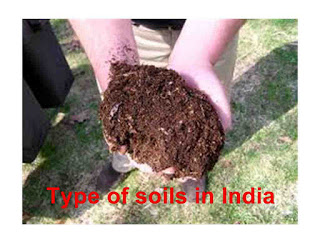 soils of India and soils in india