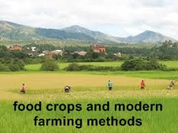 modern farming methods,food crops and agriculture question bank